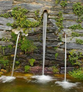 El Agua, la Madre del Té
